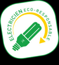 reserver electricien Moisenay